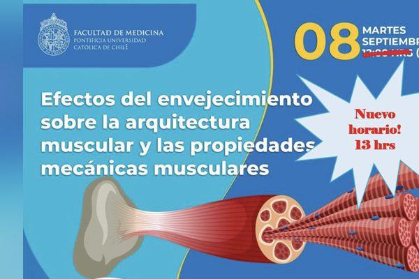 VIDEO | Efectos del envejecimiento sobre la arquitectura muscular y las propiedades mecánicas muscules